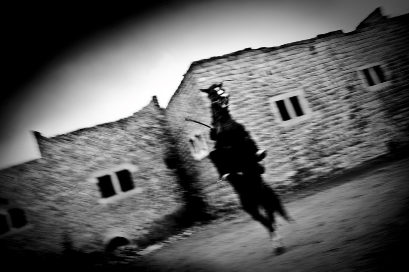 A horse is getting trained in Hebron.